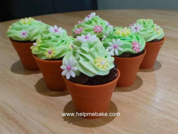 Click image for larger version.  Name:Flowerpot Cupcakes.JPG Views:667 Size:41.3 KB ID:1562